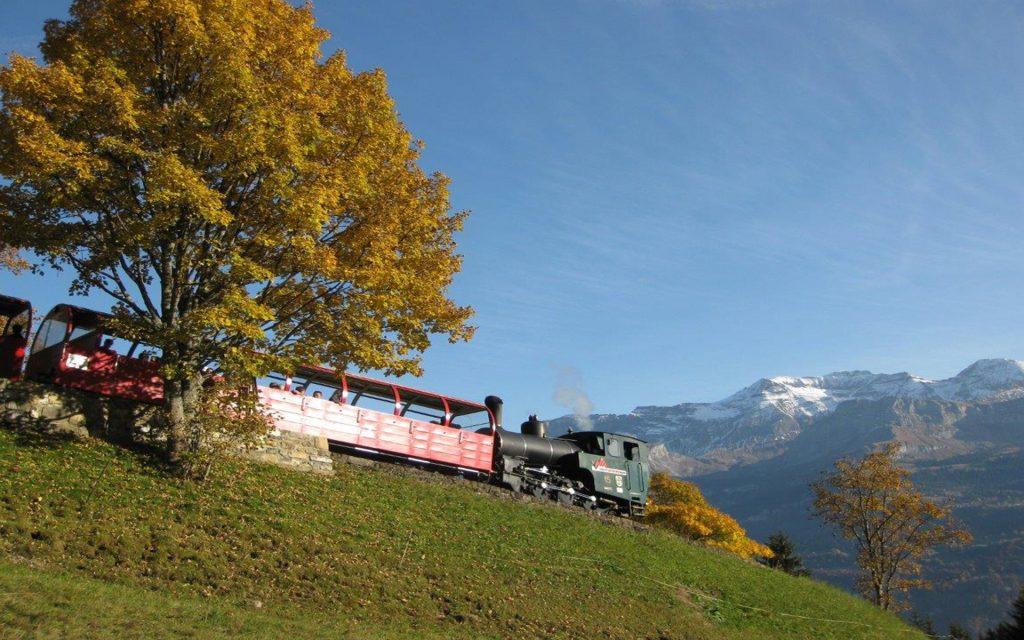 Die neue Zahnrad-Dampflokomotive H 2/3 Nr. 15 der Brienz-Rothorn-Bahn am 11. 10. 2008 auf der Bergfahrt vor Planalp. Man beachte die absolut rauchfreie Verbrennung. Foto Roger Waller